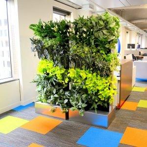 Модулни системи за вертикално озеленяване