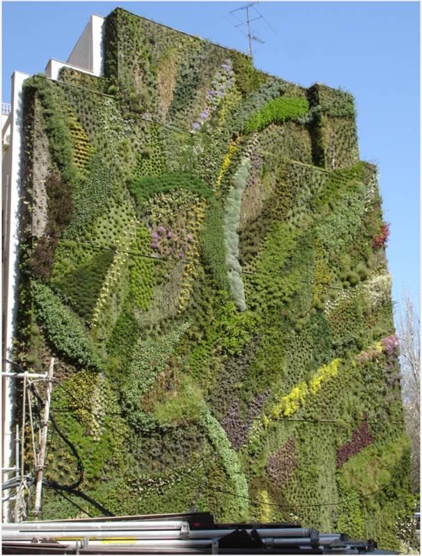 vertikalno-ozeleniavane-jiva-stena