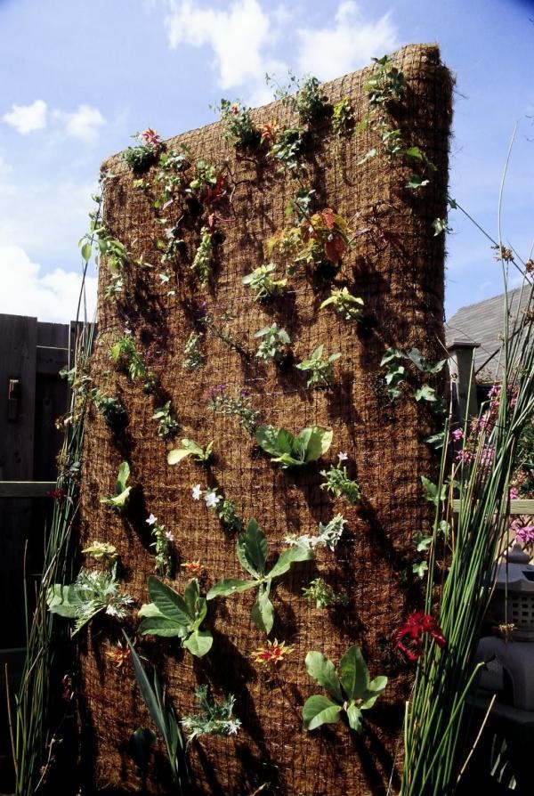 вертикална жива градина