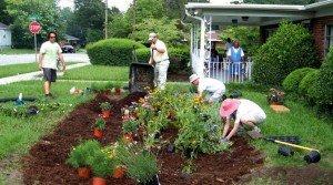 poddrujka-na-zeleni-ploshti-garden