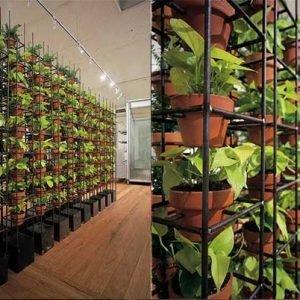 Продукти Интериорно Озеленяване