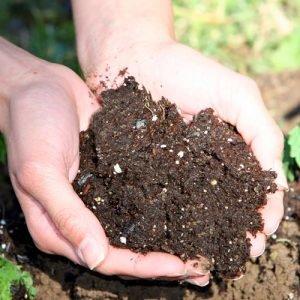 Почвени смеси