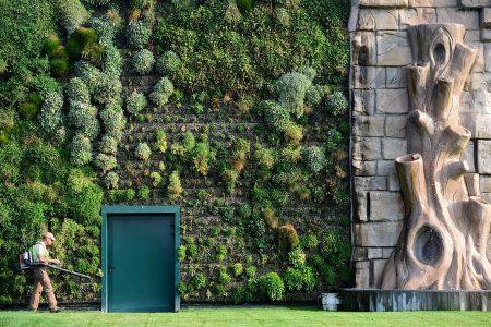 Онлайн каталог за вертикално озеленяване