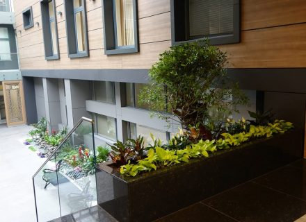 Реализиран ландшафтен проект за интериорно озеленяване