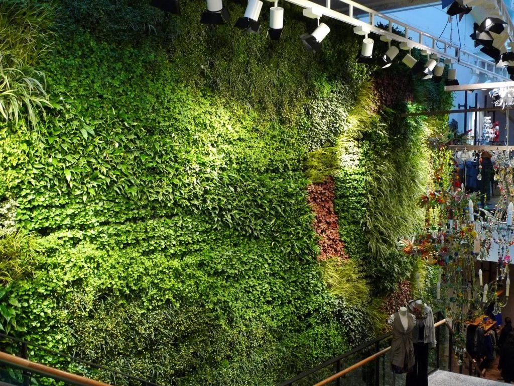 Green Wall Sustainability And Usability In Home Landscape