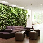 зелените картини в интериора - вертикално озеленяване