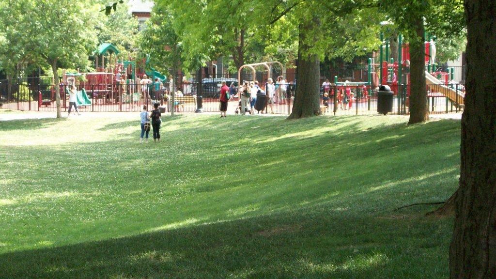 Поддържане на зелени площи