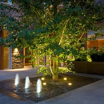идеи за озеленяване на малък двор asian landscape College Crescent