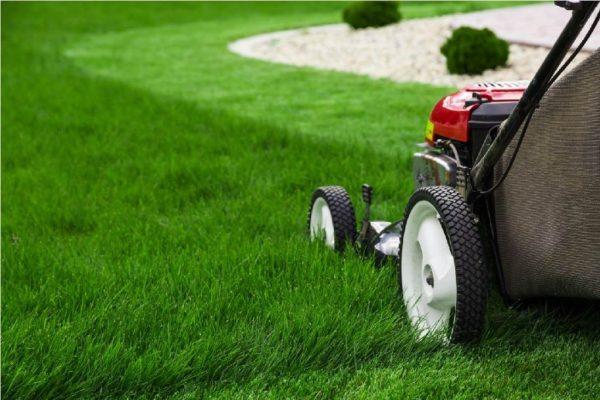 Озеленяване и поддръжка, mowing пригответе се за пролетта