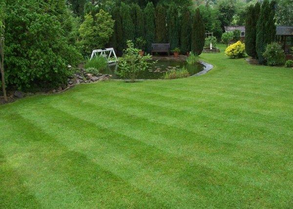 Озеленяване и поддръжка на зелени площи