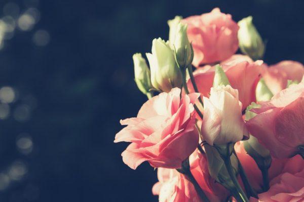 лизиантус-градина