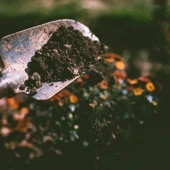 подмяна-на-почвата-pochvata-proletta